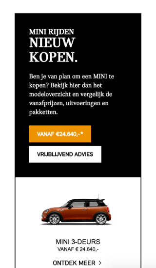 Website voorbeeld: Ekris MINI