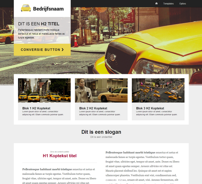 WordPress thema 'Bricks'