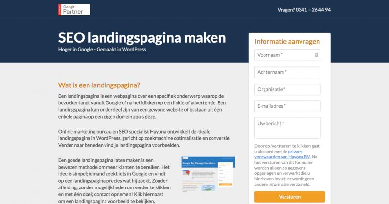 Landingspagina SEO website voorbeeld